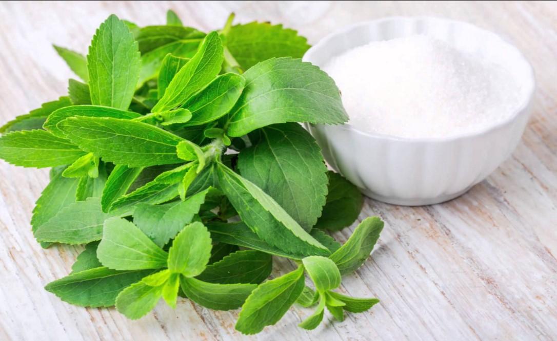 Endulzante natural - Hojas de Stevia